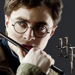 Harry Potter W e il prigioniero di Zagabria
