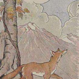 La favola della volpe e l'uva raccontata da un esercito orientale